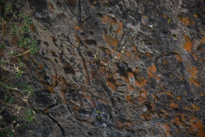 Los petroglifos de Altzayanca son elementos similares a figuras humanas, de animales y elementos geométricos
