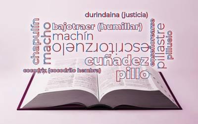 Por qué la RAE retiró más de 2 mil palabras del diccionario