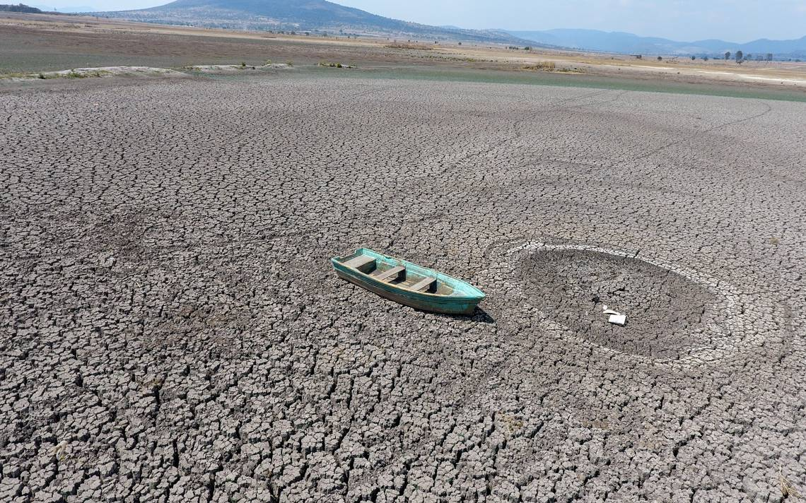 Video] Por sequía se acaba la vida en represas de Tlaxcala - El Sol de  Tlaxcala | Noticias Locales, Policiacas, sobre México, Tlaxcala y el Mundo